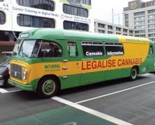 Dunedin-Studie: Cannabis ist sicher für Erwachsene