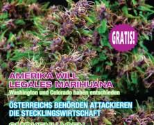 Medijuana 1/2013