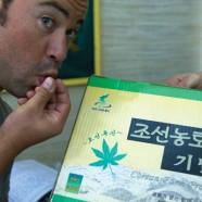 Nordkoreanischer Kush