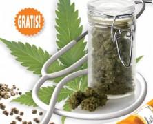 Medijuana 3/2013