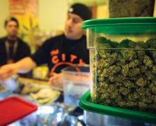Die Mehrheit entscheidet: Legalisierung!
