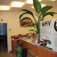ÖHV-Homebase in Wien