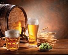 Uruguay: Gras nicht teurer als Bier