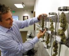 Die Legalisierung ist unaufhaltsam
