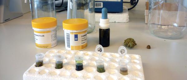 Cannabis als Schmerzmittel bei Patienten mit Multipler Sklerose