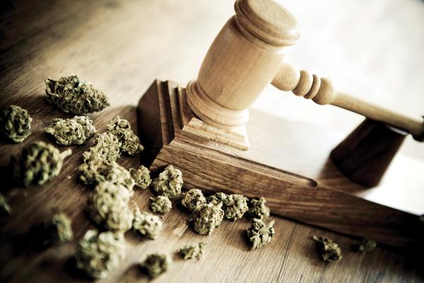 CDU-Vertreter für Legalisierung