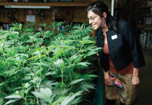 Rebecca Gasca überblickt Pflanzen