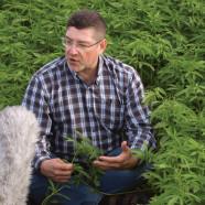 Neuropsychiatrische Erkrankungen mit Cannabis behandeln