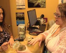 Schadensminimierung mit Cannabis