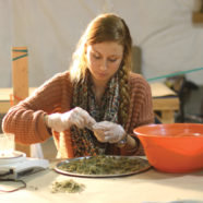 Österreichs neue Drogengesetze lösen keine alten Probleme