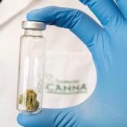 Info für MarihuanakonsumentInnen