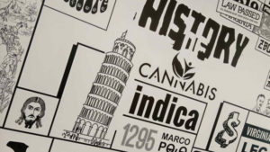 history_of_cannabis