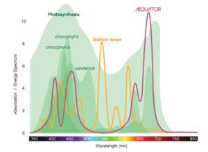 chart_lichtspektrum_english