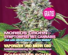 Medijuana 2/2017
