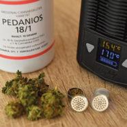Medizinisches Cannabis heiß begehrt
