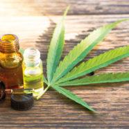 Wundermittel Cannabis-Öl