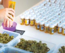 Schweiz: Legalisierung auf Probe geplatzt