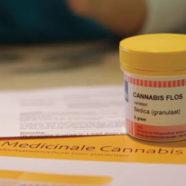 Ein Jahr Cannabis auf Rezept