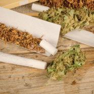 Kiffen kann zum Tabakrauchen verleiten