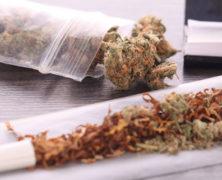 Cannabis nur zusammen mit Tabak schädlich