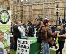 Mehrheit der Briten für die Legalisierung