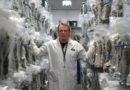 Die Top-5-Cannabisländer