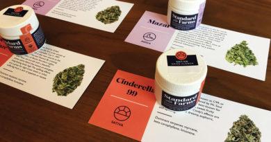 cannabiskurse