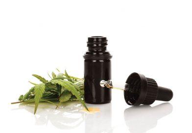 Dosierung von CBD-Öl