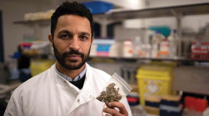 England verbessert den Zugang zu medizinischem Cannabis